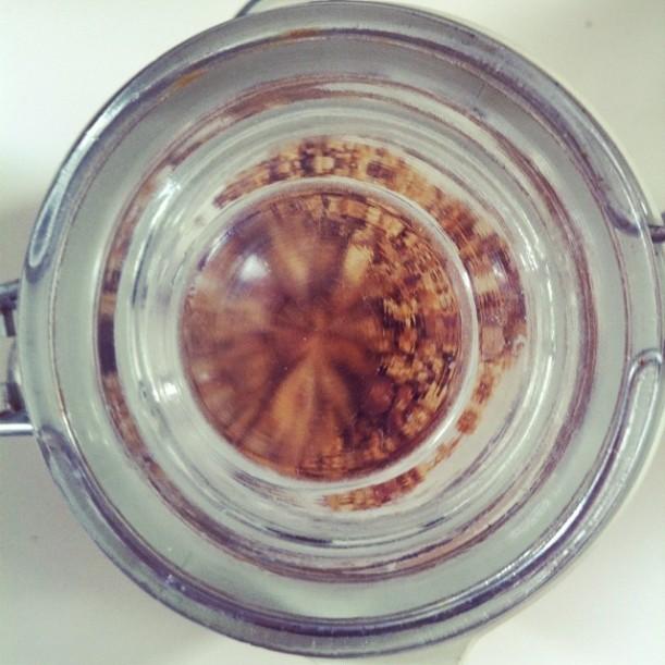 Cruesli-morningglory